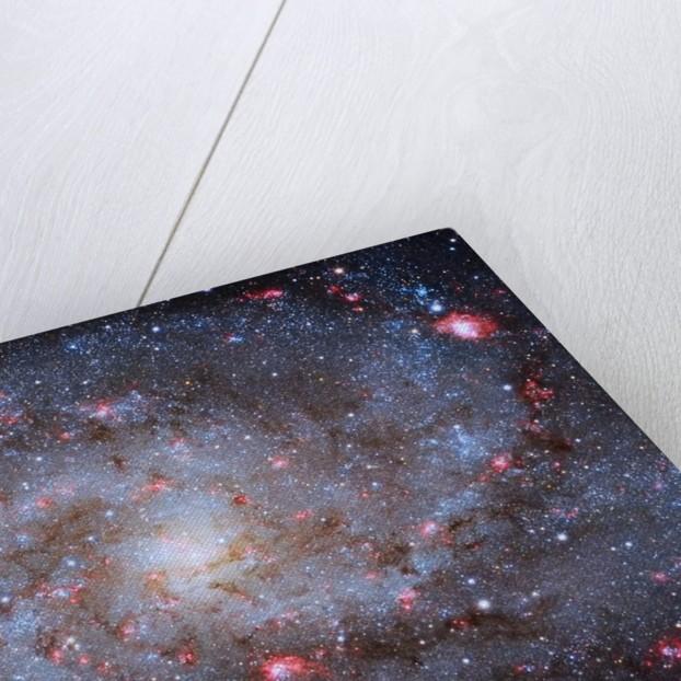 M33 Core by Michael van Doorn