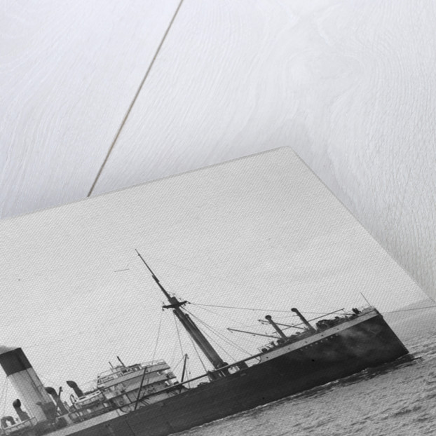 Photograph of the ship HMS Laomedon (1912) by unknown