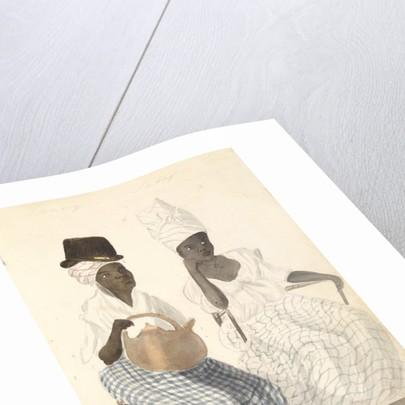 Two ladies of Barbados by Edward Pelham Brenton