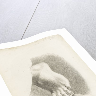 Study of a foot with toes bent by Matilda Rose Herschel