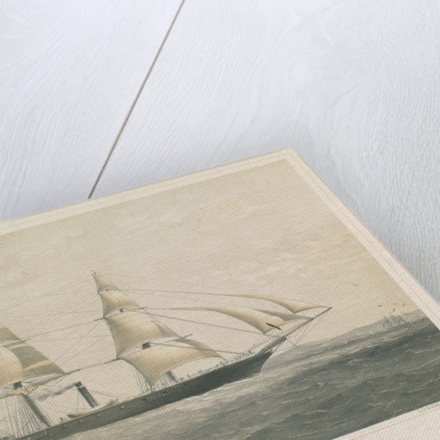 Steamship 'Torino' ad Elice di Bandiera Sarda 1859 Tonnellate 300 Cavalli Della Compagnia Transatlantica per la Navigazione a vapore by Thomas Goldsworth Dutton