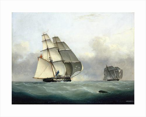 The capture of the Slaver 'Gabriel' by HMS 'Acorn', 6 July 1841 by Nicolas Matthew Condy