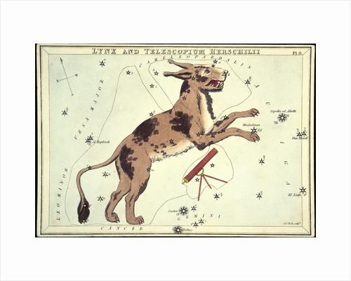 Constellation card, Urania's mirror, Lynx and Telescopium Herschilii by Sidney Hall