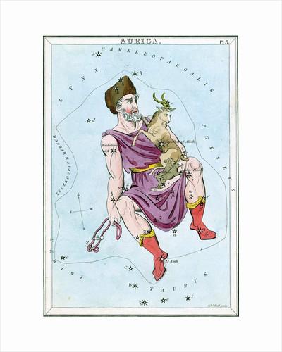 Constellation card, Urania's Mirror, Auriga by Sidney Hall