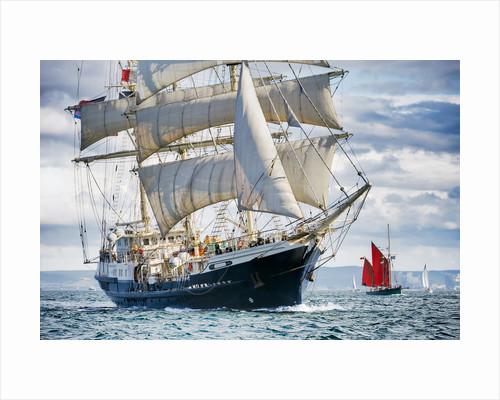 'Tenacious' participating in the parade of sail, Hartlepool Tall Ships Regatta 2010 by Richard Sibley
