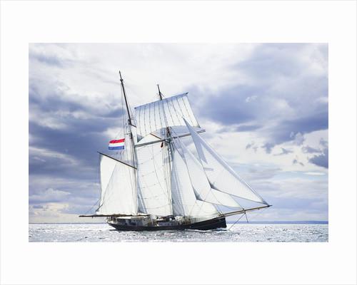 'Wylde Swan' during North Sea Tall Ships Regatta 2010 by Richard Sibley