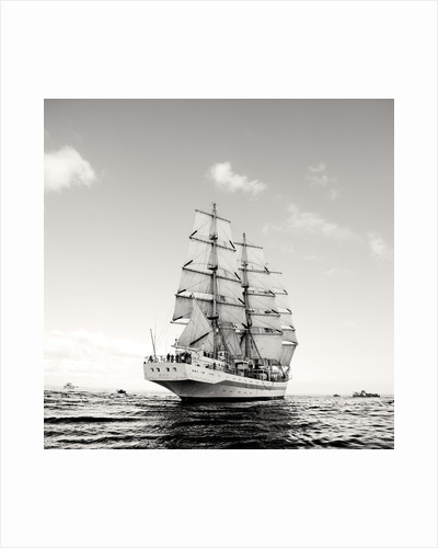 Russian full-rigged ship 'Mir' at Falmouth for the start of the Funchal 500 Tall Ships Regatta, 2008 by Richard Sibley