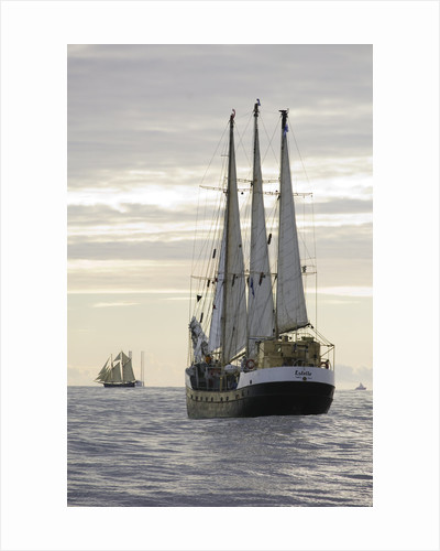 Finnish 3-masted schooner 'Estelle' underway at sunset, during Bergen to Den Helder Tall Ships Race, 2008 by Richard Sibley