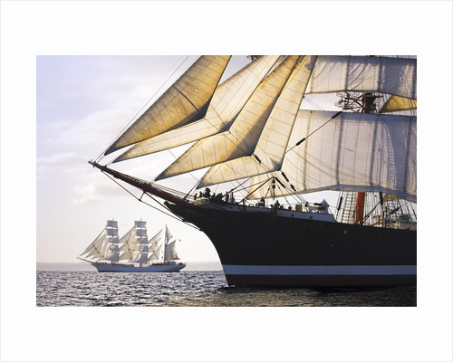 Russian four-masted barque 'Sedov' at Falmouth during Funchal 500 Tall Ships Regatta, 2008 by Richard Sibley