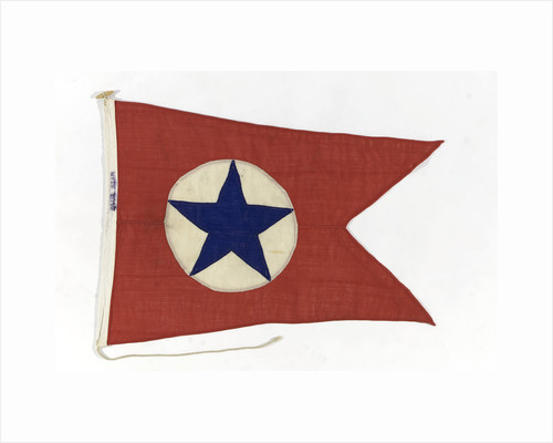 House flag, Blue Star Line Ltd by unknown