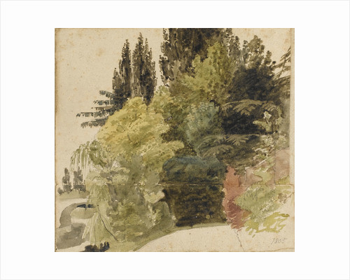 A study of trees in the grounds at Merton Place by Thomas Baxter