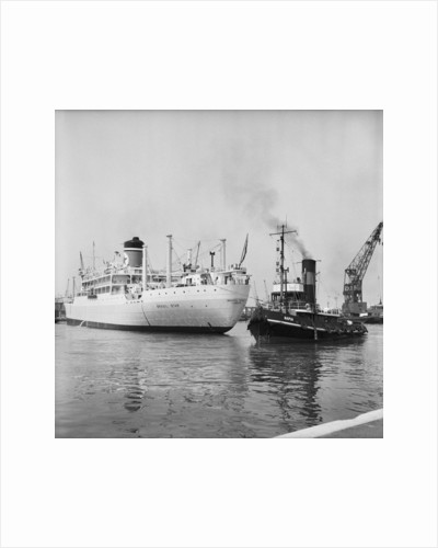 The 'Brasil Star' and the tug Napia by Grierson
