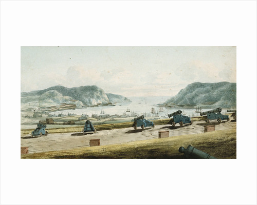 View of St. John's, Newfoundland from Fort Townsend by George Bulteel Fisher