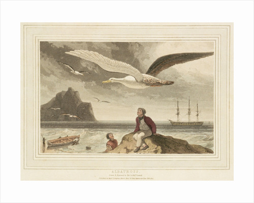 Albatross by Thomas Daniell