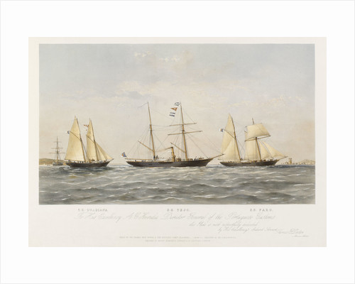 SS 'Guardiana', SS 'Tejo', SS 'Faro' by Thomas Goldsworth Dutton