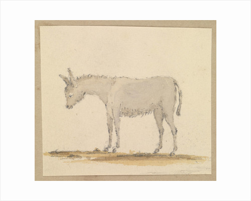 Study of a donkey by Robert Streatfeild