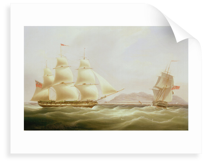 The ships 'Vigilant' and 'Harpooner' offshore by William John Huggins