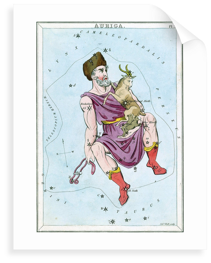 Constellation card, Urania's Mirror, Auriga by Sidney Hall