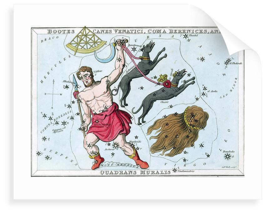 Constellation card, Urania's mirror by Sidney Hall