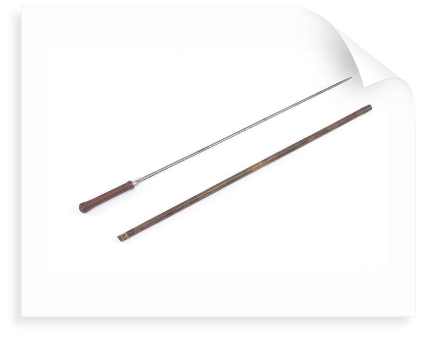 Sword-stick by Wilkinson