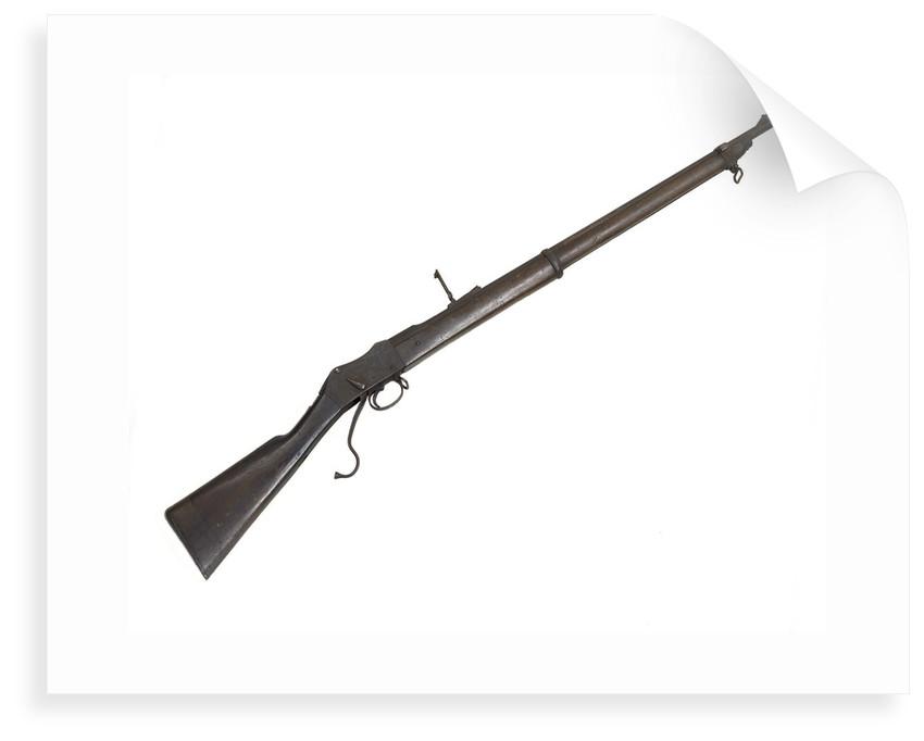 Martini rifle by W.W. Greener
