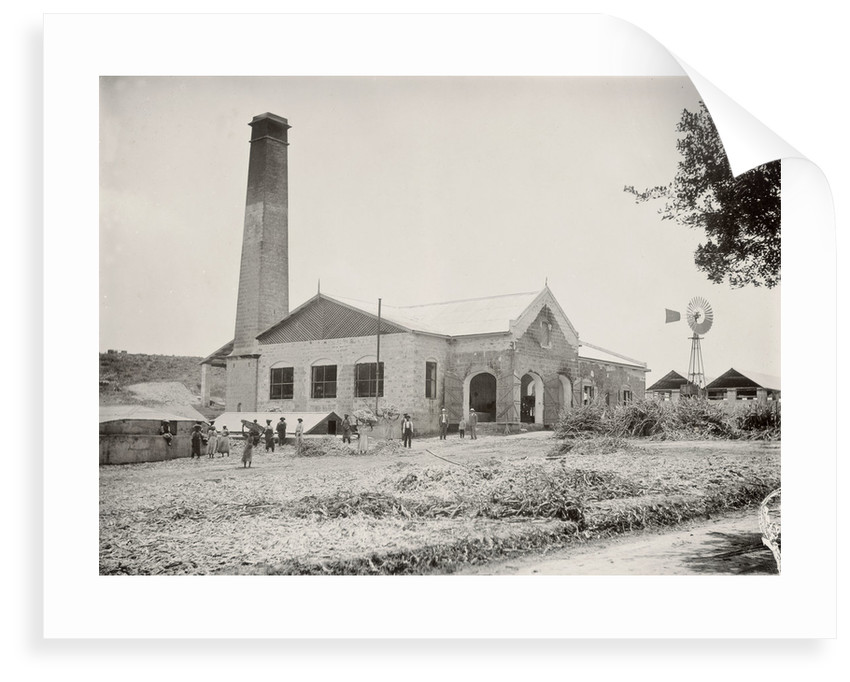 Applewhaites Barbados sugar works facing NE by unknown