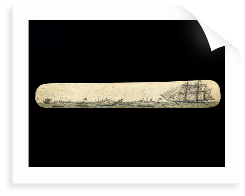 A scrimshaw staybusk made of whalebone by unknown