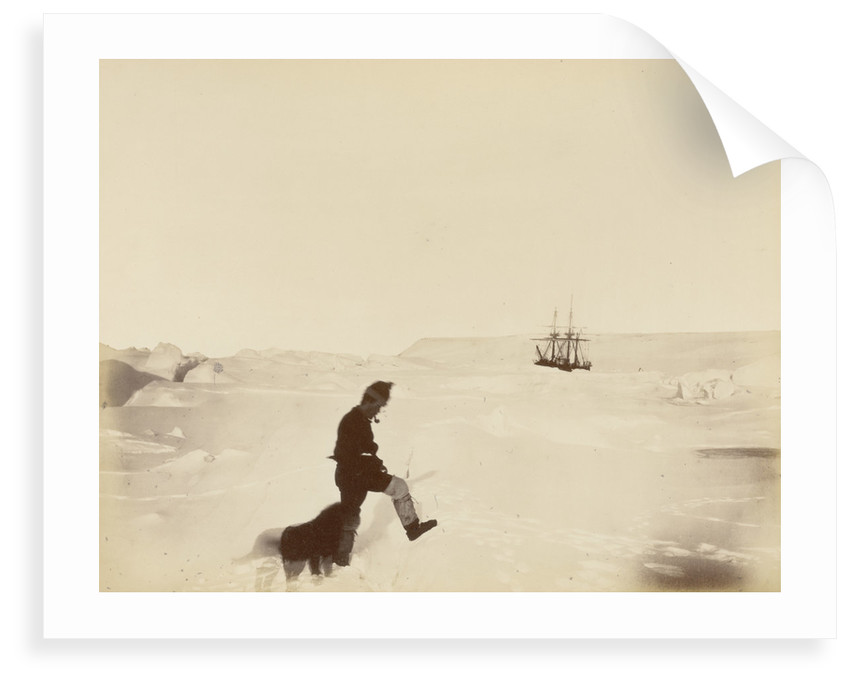 Winter quarters of the 'Alert'; Cape Rawson in the distance; Mr White and 'Nelly', during British Arctic Expedition, 1875-1876. by George White