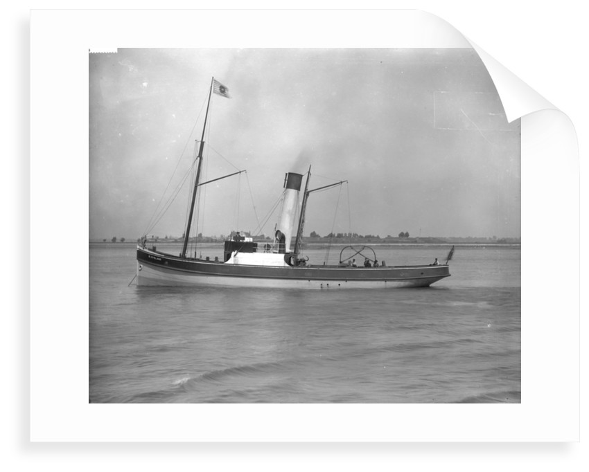 Tug 'Cleveland' (Br, 1894), J Mitchell & Sons by unknown