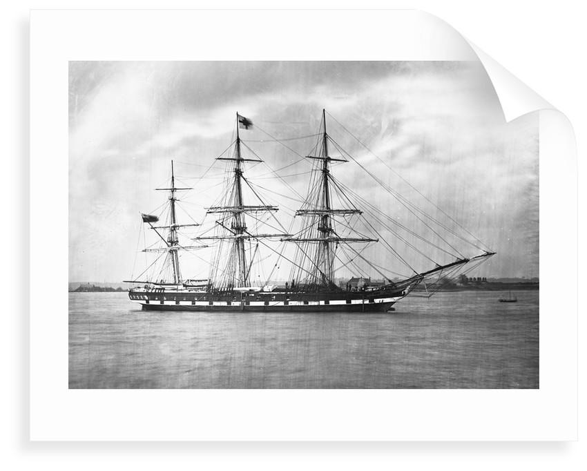 'Suffolk' (Br, 1857) by unknown
