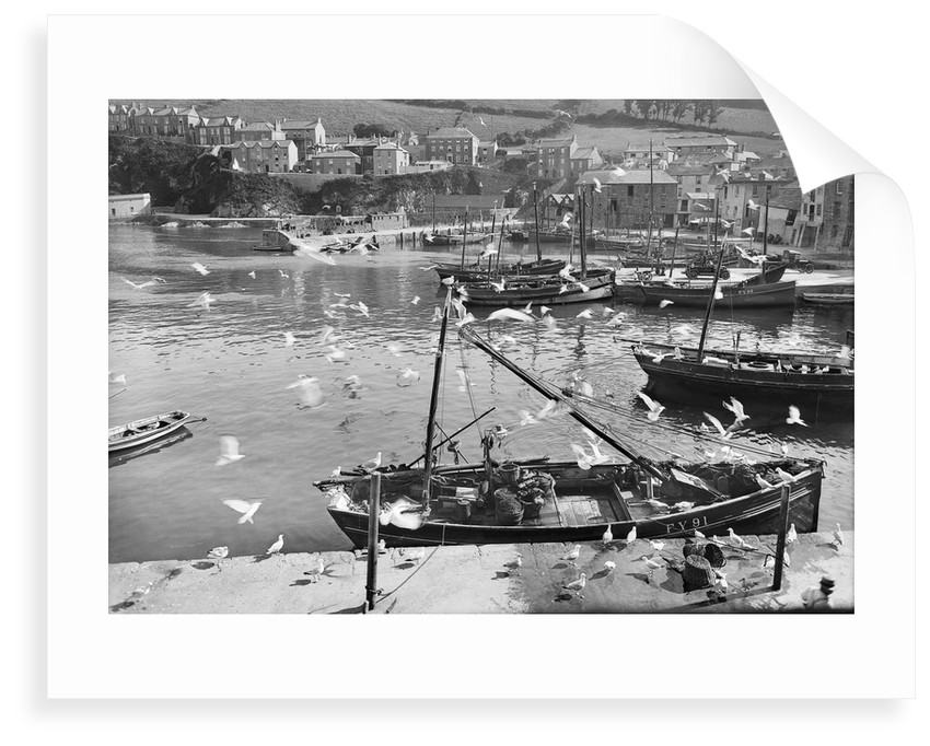 Harbour and flock of seagulls, Mevagissey, Cornwall by National Maritime Museum