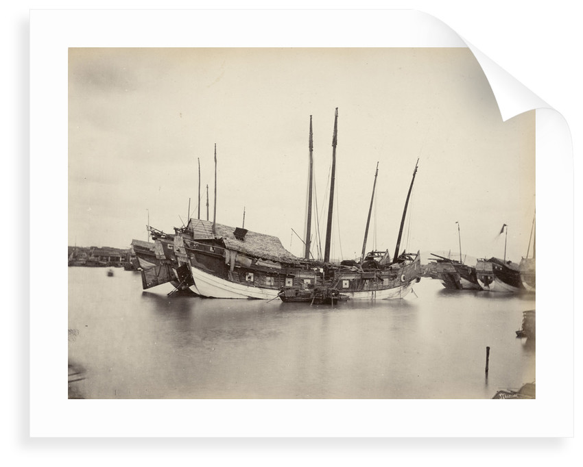 Junks on the Pearl River [Zhu Jiang] near Canton, large-format albumen print by John Thomson