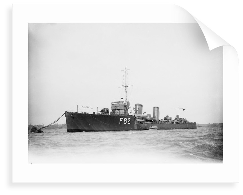 Destroyer HMS 'Truculent' (1917) by unknown