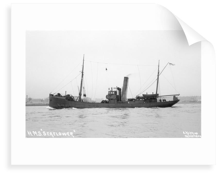 Trawler HMS 'Seaflower' (1908), 1912 by unknown