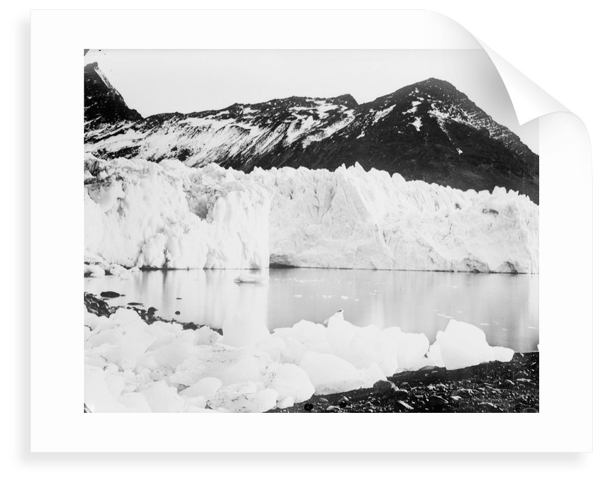 Hamberg Glacier, Moraine Fjord, South Georgia by unknown