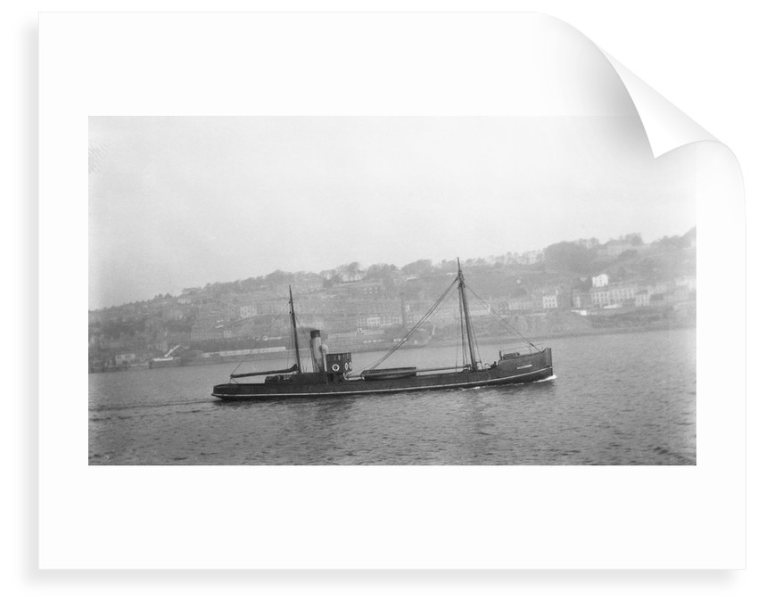The 'Alexandra' (Br, 1876) under way by unknown