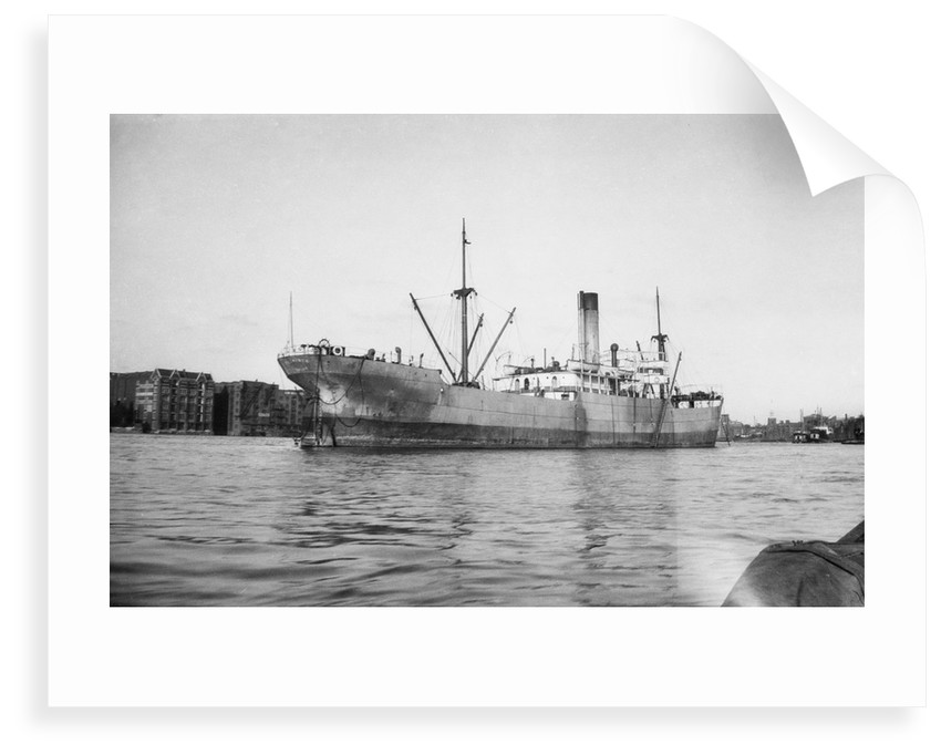 'Petworth' (Br, 1918), at anchor by unknown
