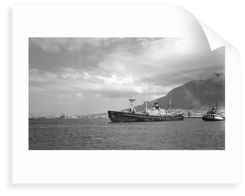Liberty' type, general cargo ship 'Rialto' (Italy, 1943), ex 'Henry C. Paine'. Compagnia Armatoriale Italiana Molin & Meotto by unknown