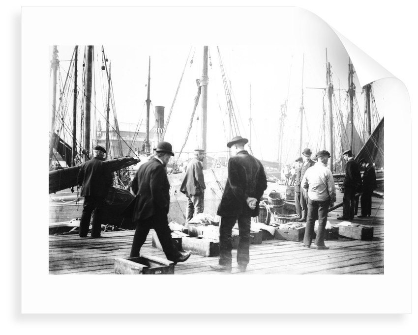 Unloading the catch in Lowestoft Harbour, with the South Pier Pavilion in the background by Smiths Suitall Ltd.