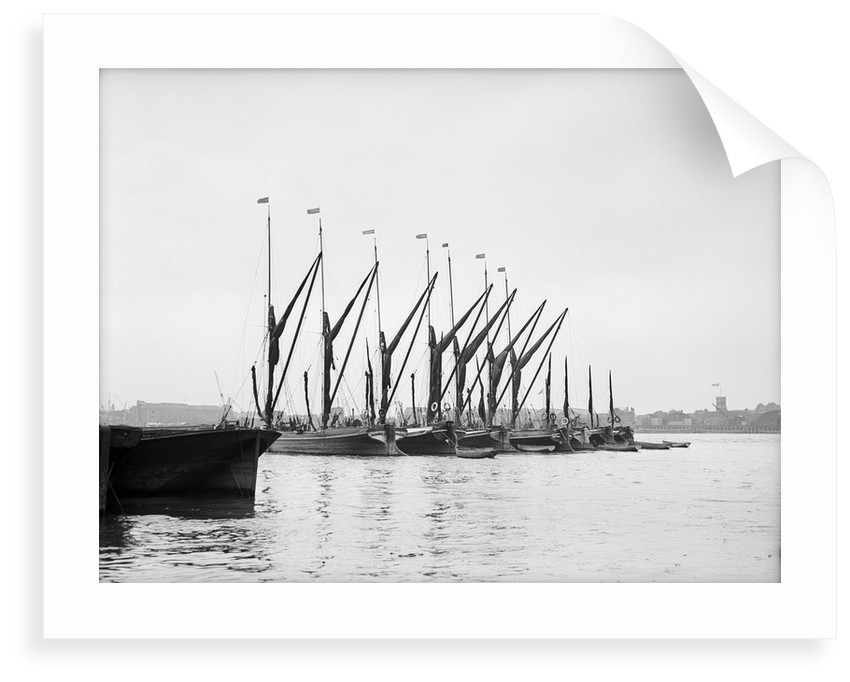 Topsail barges by unknown