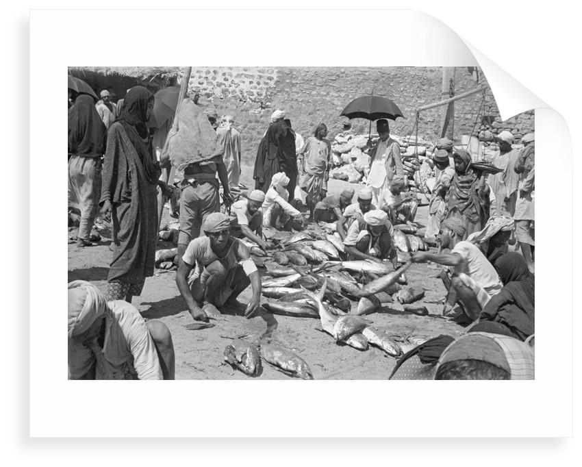 Fish being sold on the beach, Mutrah by Alan Villiers