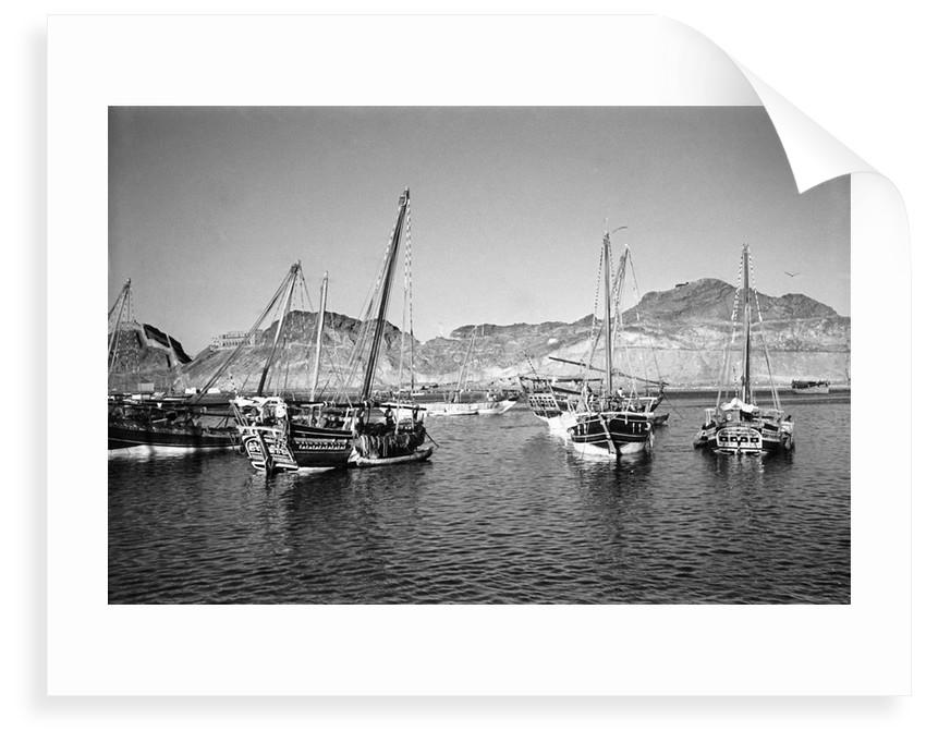 Zarooks and sambuks ride at anchor, Ma'alla, Aden by Alan Villiers