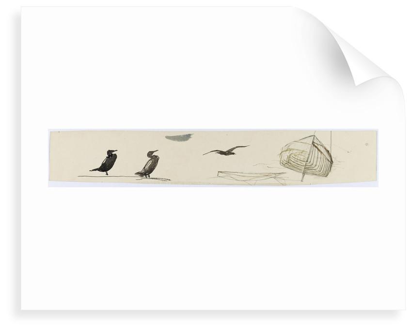 Seabirds by William Lionel Wyllie