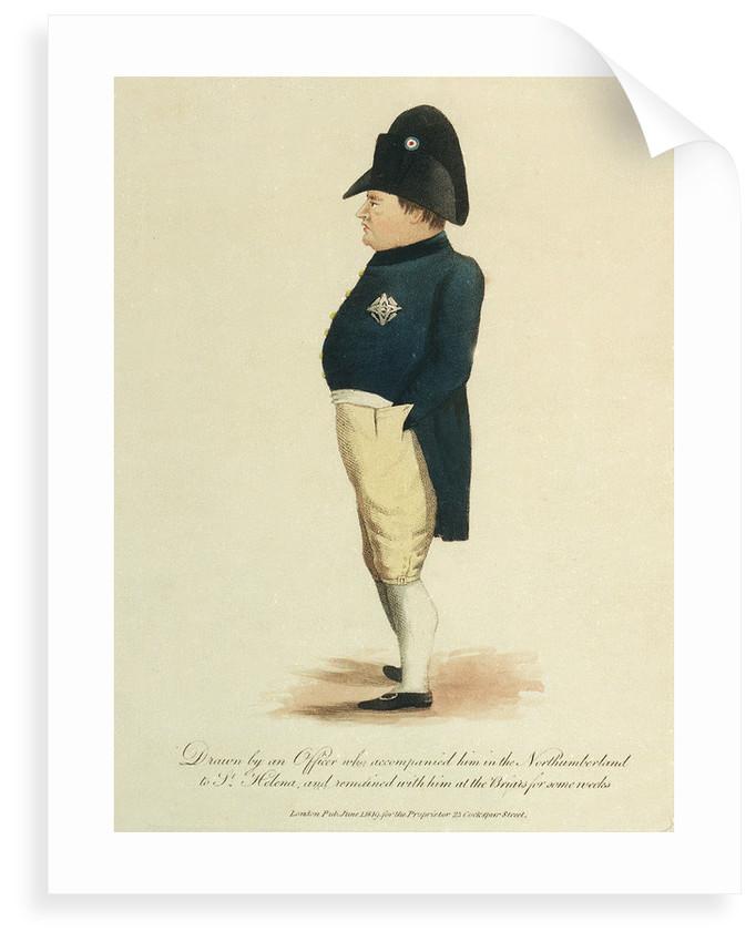 Napoleon Bonaparte by unknown