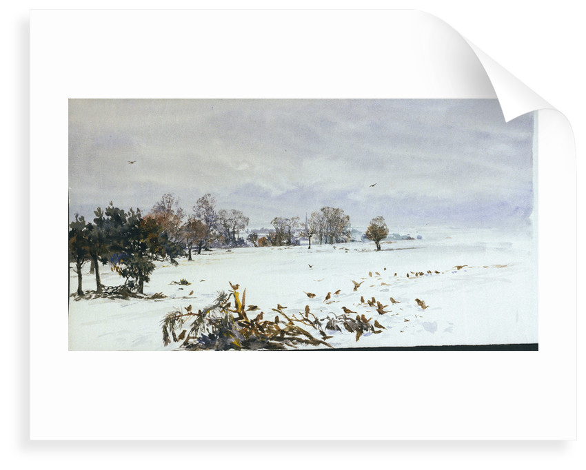 A landscape under snow with a flock of feeding birds in the foreground by William Lionel Wyllie