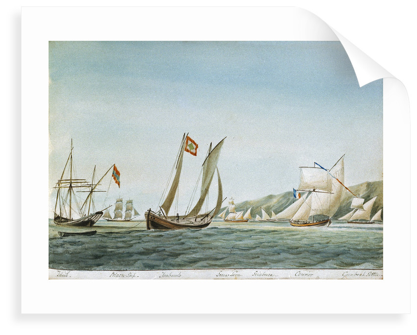 Sketch of various sorts of vessels in the Adriatic, including a zebeck [xebec], trabacolo [trabaccolo], a French courier and a gunboat settee by William Innes Pocock