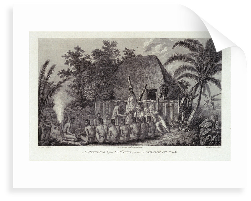 An offering before Capt Cook, in the Sandwich Islands by John Webber