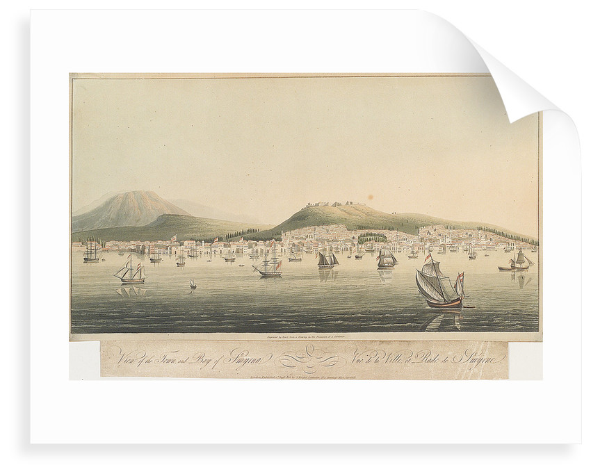 View of the town and bay of Smyrna by Havil