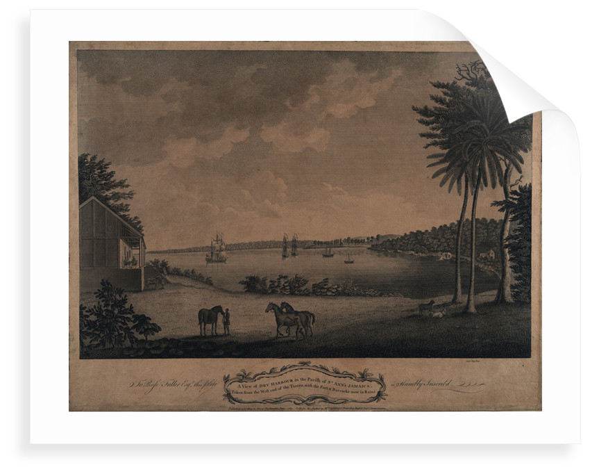A view of Dry Harbour in the parish of St Ann's Jamaica by unknown