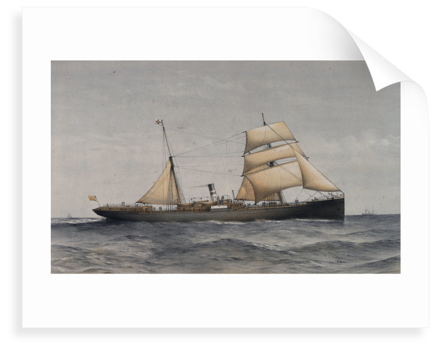 Cape and Natal Line SS 'Majuba' or 'Elmina' by Thomas Goldsworth Dutton